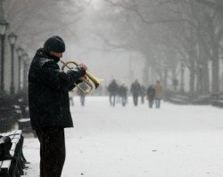 Trumpet in Winter