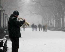 Trumpet in Winter