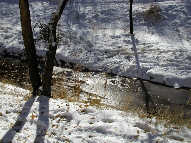 Santa Fe River in Winter