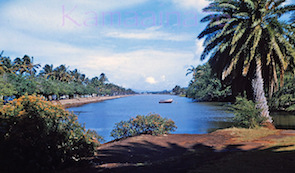 Ala Wai Canal. 1960