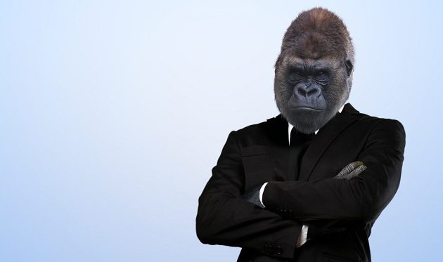 GORILLA IN A SUIT