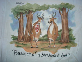 Bummer of a Birthmark The Far side
