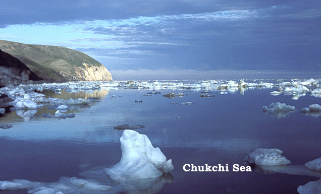 Chapter Twenty-Three, Arch Patton: The Bering Sea