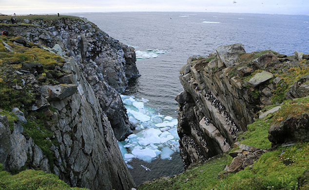 High Cliffs of Russia Bering Sea